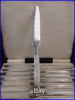 Suite De 18 Couteaux A Fruits Lames Argent Massif Poincon Minerve Manches Nacre